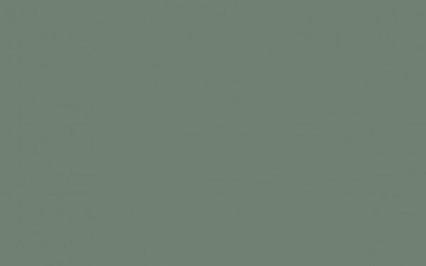 Ambleside (304)