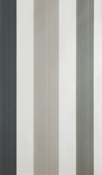 Chromatic Stripe 4201