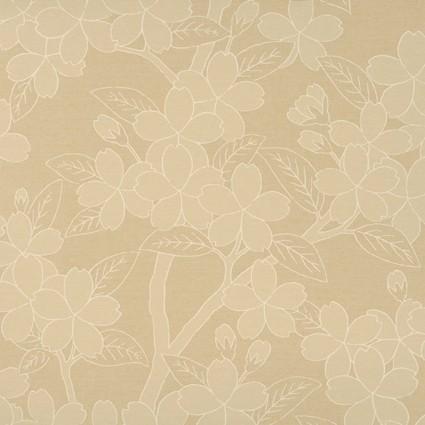 Camellia - TUSSAH