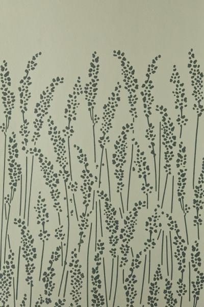 Feather Grass 5105