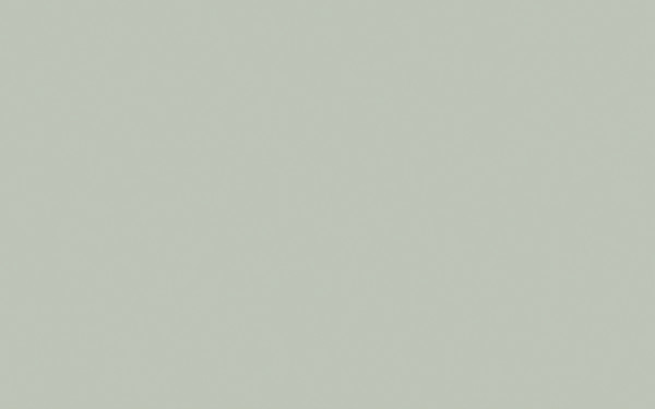 Pearl Colour Dark (169)