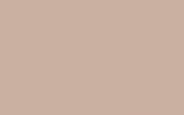 China Clay Dark (178)